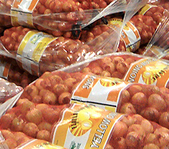 Flatland Ag is a Yellow Onions Producer in Aurora North Carolina